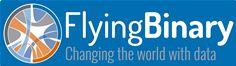 FlyingBinary logo