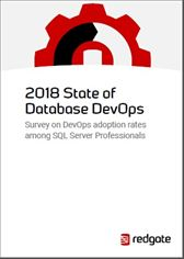 2018 State of Database DevOps