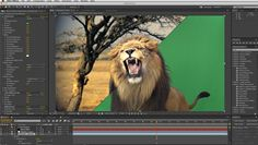 Adobe After Effects Example