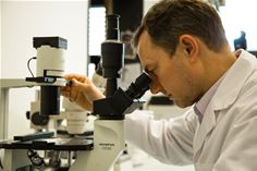 New in-vivo study confirms that ciliate vaccine protects against flu